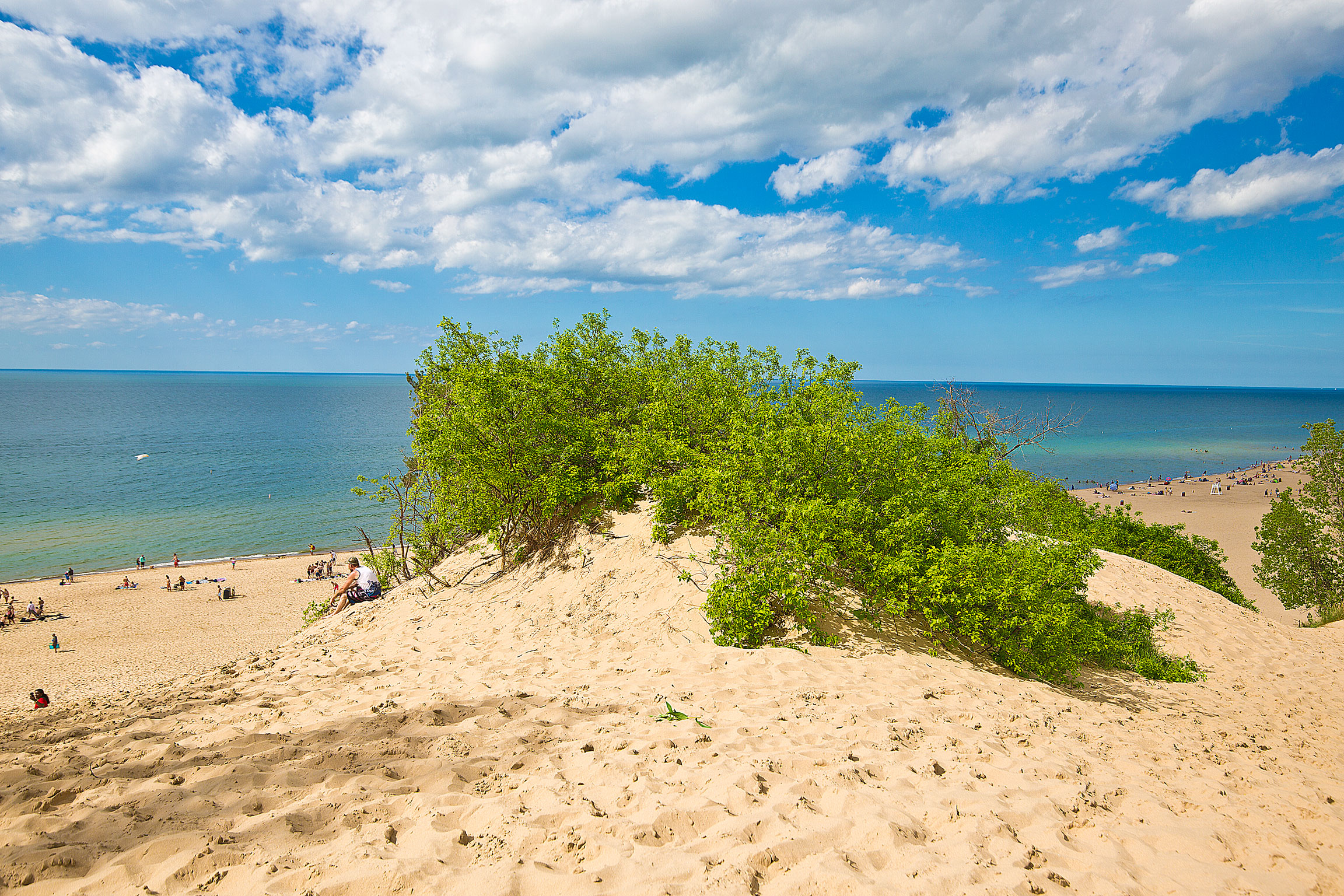 Dune in Indiana Dunes State Park