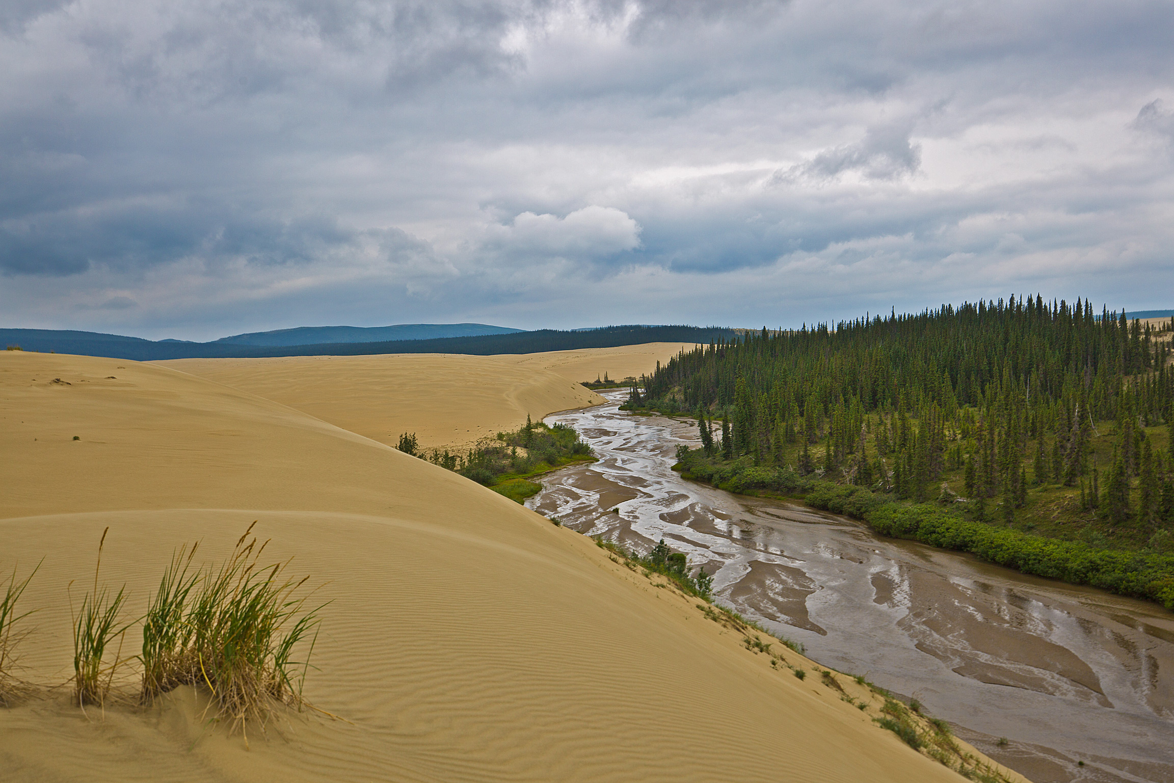 Dunes and Creeks in Kobuk Valley